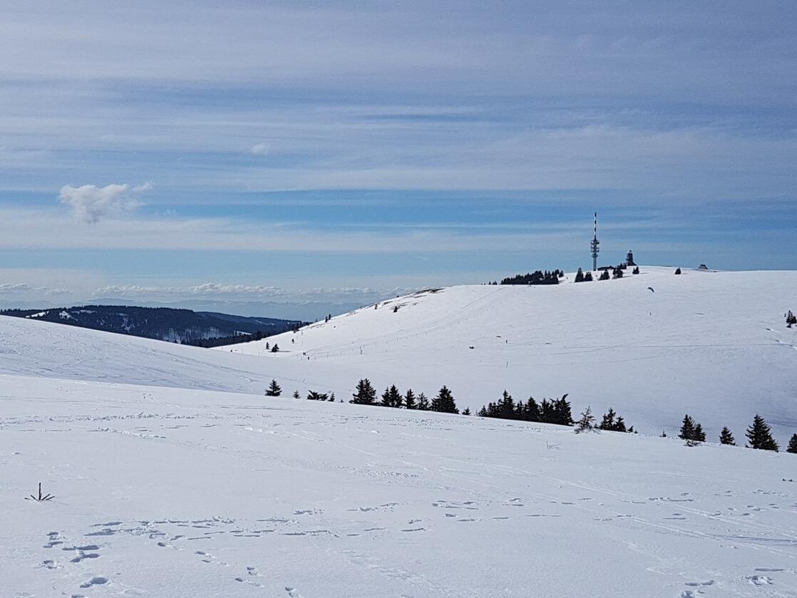 Feldberg (Schwarzwald)